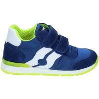 Sapatos Criança Sapatilhas Falcotto 2012380-01-9105 Azul