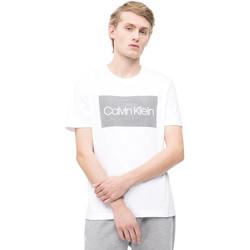 Textil Homem T-Shirt mangas curtas Calvin Klein Jeans K10K103654 Branco