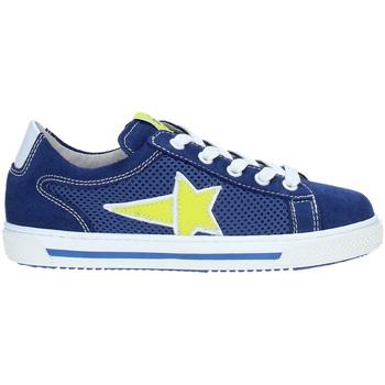 Sapatos Criança Sapatilhas Nero Giardini P933450M Azul
