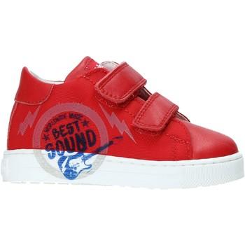 Sapatos Criança Sapatilhas Falcotto 2013622-01-1H02 Vermelho