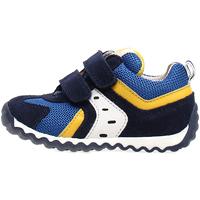 Sapatos Criança Sapatilhas Naturino 2013741-01-1C81 Azul