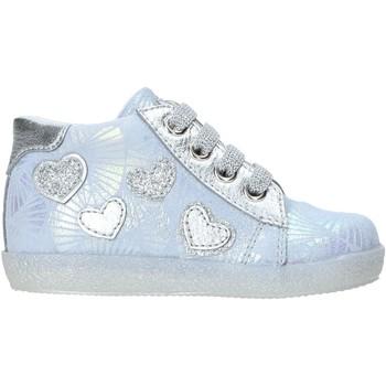 Sapatos Criança Sapatilhas de cano-alto Falcotto 2013846-02-1C73 Azul