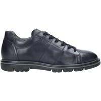 Sapatos Homem Sapatilhas NeroGiardini A901160U Azul