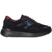 Sapatos Homem Sapatilhas Exton 335 Azul