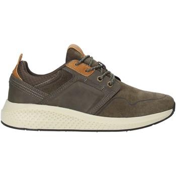 Sapatos Homem Sapatilhas Wrangler WM92140A Verde