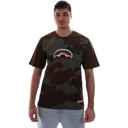 Textil Homem T-Shirt mangas curtas Sprayground SP018SBRO Castanho