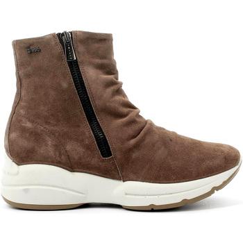 Sapatos Mulher Botins IgI&CO 4148311 Castanho