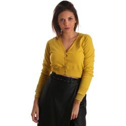 Textil Mulher Casacos de malha Fracomina FR19FM823 Amarelo