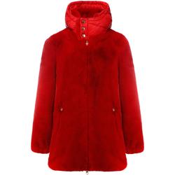 Textil Mulher Casacos  Invicta 4431600/D Vermelho