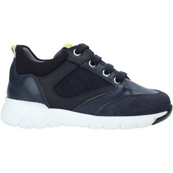 Sapatos Criança Sapatilhas NeroGiardini A923730M Azul