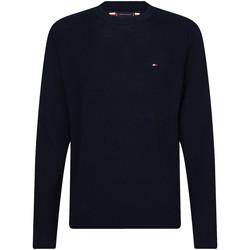Textil Homem camisolas Tommy Hilfiger MW0MW13122 Azul