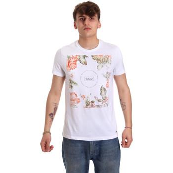 Textil Homem T-Shirt mangas curtas Gaudi 011BU64070 Branco