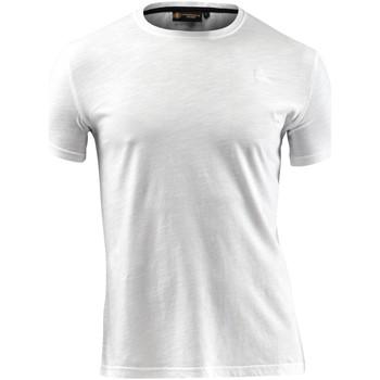 Textil Homem T-Shirt mangas curtas Lumberjack CM60343 004 517 Branco