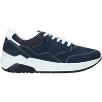 Sapatos Homem Sapatilhas IgI&CO 5132033 Azul