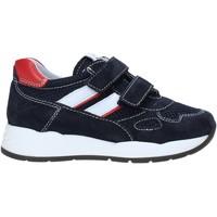 Sapatos Criança Sapatilhas Nero Giardini E023830M Azul