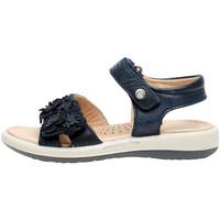 Sapatos Rapariga Sandálias Naturino 0502724 04 Azul