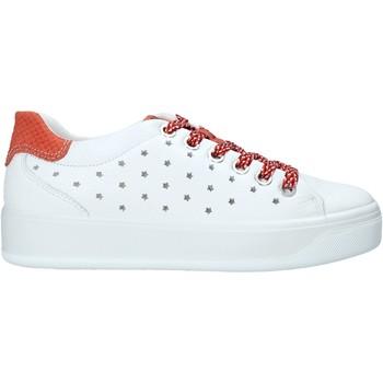 Sapatos Mulher Sapatilhas IgI&CO 5157322 Branco