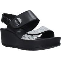 Sapatos Mulher Sandálias IgI&CO 5178200 Preto