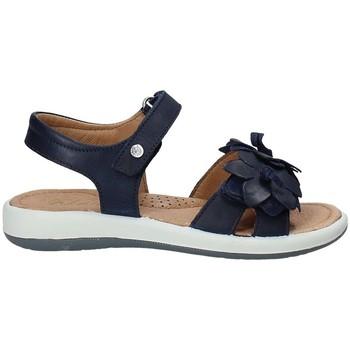 Sapatos Criança Sandálias Naturino 0502549-02-0C02 Azul