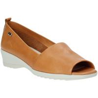 Sapatos Mulher Sabrinas Valleverde 41141 Castanho