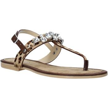 Sapatos Mulher Sandálias Replay GWF1M 251 C0001L Castanho