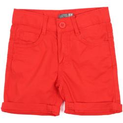 Textil Criança Shorts / Bermudas Losan 015-9655AL Vermelho