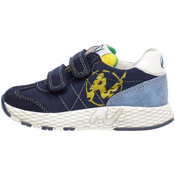 Sapatos Criança Sapatilhas Naturino 2014904 01 Azul