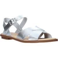Sapatos Mulher Sandálias Clarks 26139429 Prata
