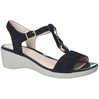 Sapatos Mulher Sandálias Stonefly 110216 Azul