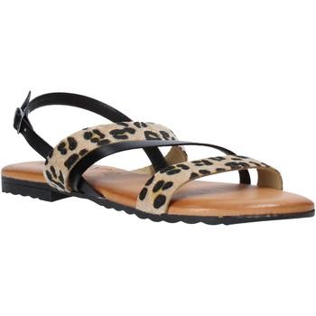 Sapatos Mulher Sandálias Jeiday JUNGLA-SALLY Preto