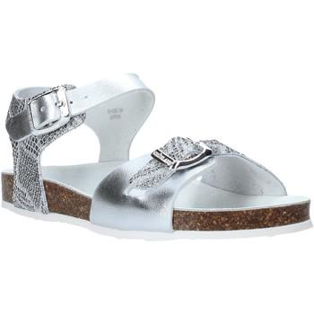 Sapatos Criança Sandálias Grunland SB1500 Prata