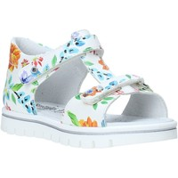 Sapatos Rapariga Sandálias NeroGiardini E021476F Branco