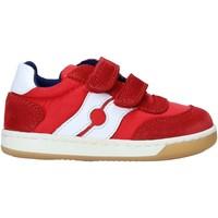 Sapatos Criança Sapatilhas Falcotto 2014666 01 Vermelho