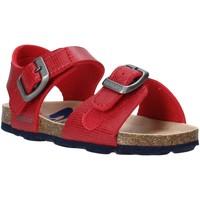 Sapatos Criança Sandálias Grunland SB1534 Vermelho