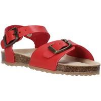 Sapatos Criança Sandálias Grunland SB1551 Vermelho