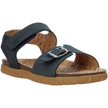 Sapatos Criança Sandálias Grunland SB1565 Azul