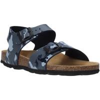 Sapatos Criança Sandálias Grunland SB0115 Cinzento