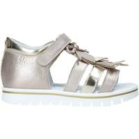 Sapatos Rapariga Sandálias Nero Giardini E021480F Outras