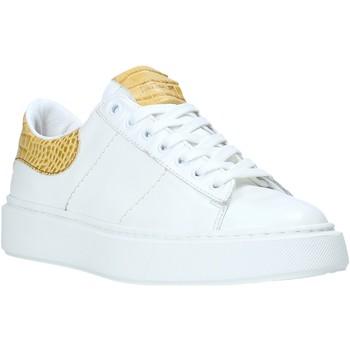 Sapatos Mulher Sapatilhas Maritan G 210345MG Branco