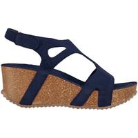 Sapatos Mulher Sandálias Docksteps DSE106243 Azul