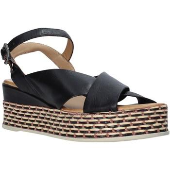 Sapatos Mulher Sandálias Bueno Shoes Q5901 Preto