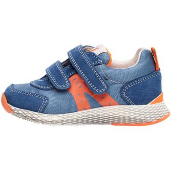 Sapatos Criança Sapatilhas Naturino 2014902 01 Azul