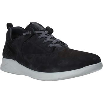 Sapatos Homem Sapatilhas Grunland SC2687 Preto