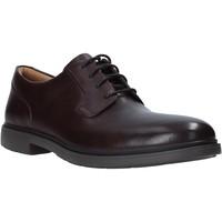 Sapatos Homem Sapatos Clarks 26146236 Castanho