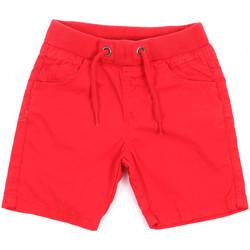 Textil Criança Shorts / Bermudas Losan 015-9657AL Vermelho