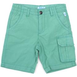 Textil Criança Shorts / Bermudas Melby 79G5584 Verde