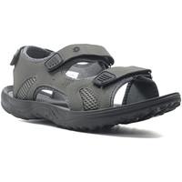 Sapatos Homem Sandálias desportivas Lotto L52292 Cinzento