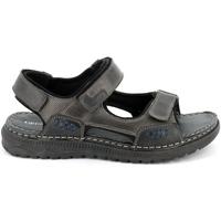 Sapatos Homem Sandálias Grunland SA2526 Preto