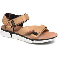 Sapatos Homem Sandálias Clarks 26141049 Castanho