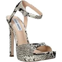 Sapatos Mulher Sandálias Steve Madden SMSLUV-GLDSNK Ouro